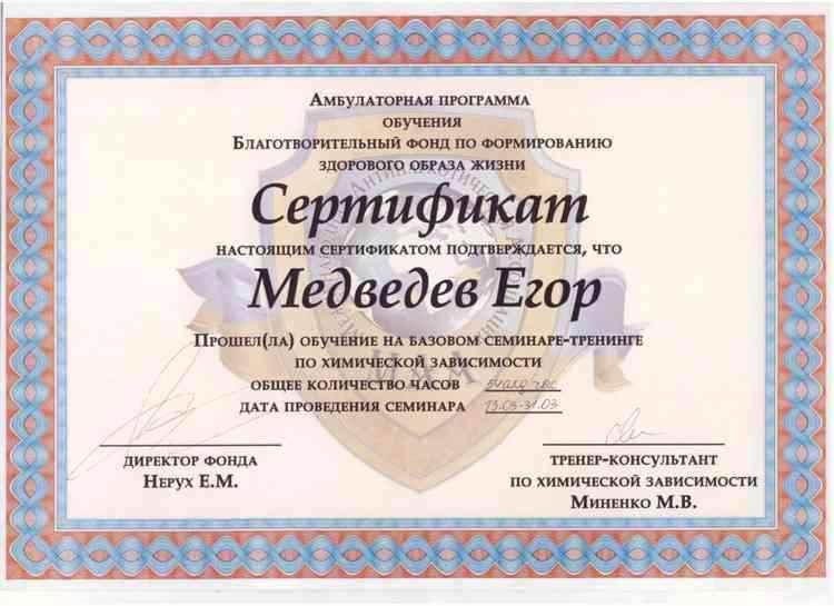 Медведев - Тренинг по химической зависимости